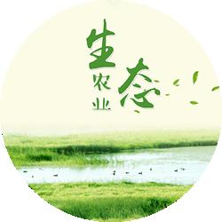 万亩生态农业基地